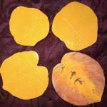 Feuilles émaillées pumpkin et pumpkin et orange  Grande pumpkin et orange Ø 16 cm : 9 € - Grande pumpkin Ø 14 cm : 8 €   Ronde pumpkin Ø 12 cm : 7 € - Petite pumpkin Ø 11 cm : 6 €